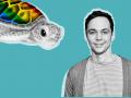 Догонит ли Шелдон Купер гей-черепаху?